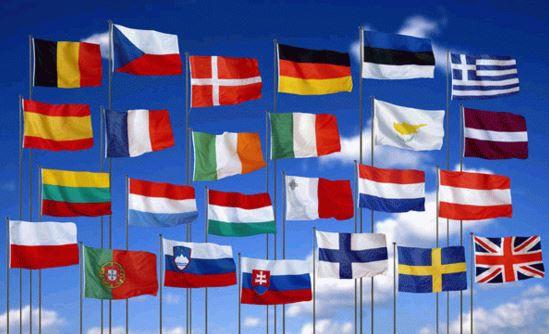 Como se llama el estudio de las banderas