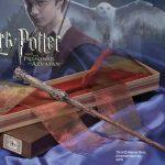 Como se llaman los hechizos de Harry Potter