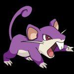 Como se llama la evolucion de rattata