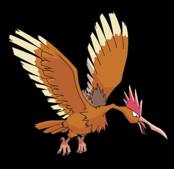 fearow evolucion de spearow
